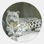 SnowLeopardM003 Etiqueta