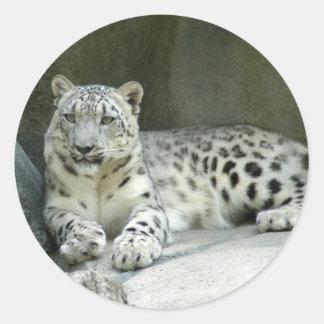 SnowLeopardM003 Round Sticker