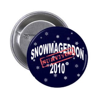 snowmageddon 2010 pins