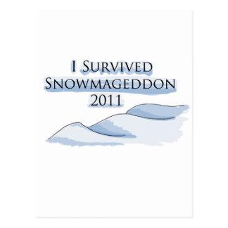 snowmageddon tarjetas postales
