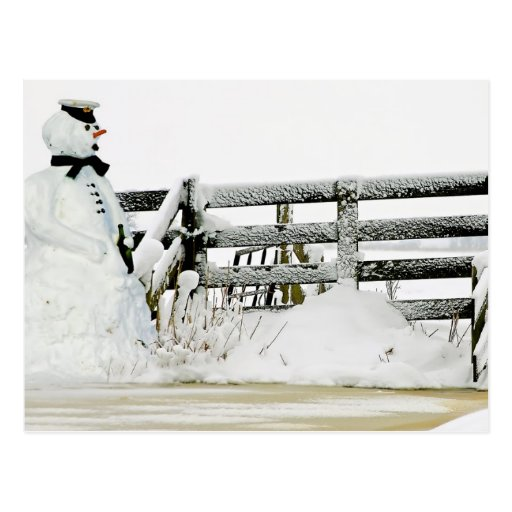 Snowman in winter in the Netherlands Post Cards