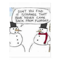 Snowman went to Florida Postcard