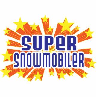 Snowmobiler estupendo esculturas fotograficas
