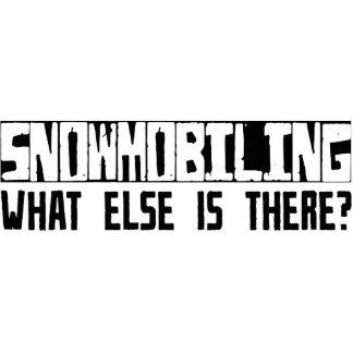 ¿Snowmobiling qué más está allí Escultura Fotográfica