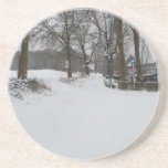 Snowpicture Coaster