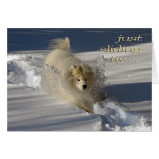Snowplow Birthday Card