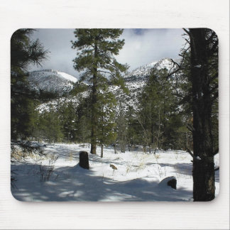Snows In Flagstaff At Arizona And On Mt. Elden Mouse Pad