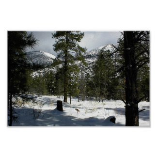 Snows In Flagstaff At Arizona And On Mt. Elden Posters