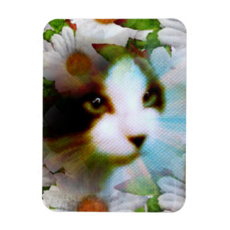 snowshoe canvass kitty hiding in the daisies rectangular photo magnet