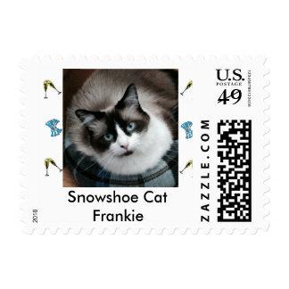 Snowshoe Cat Frankie Stamp