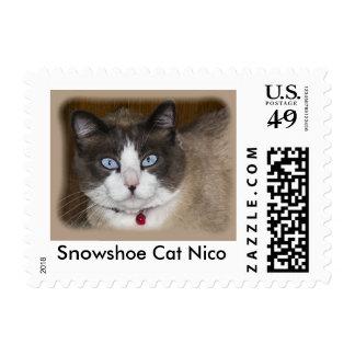 Snowshoe Cat Nico Stamp