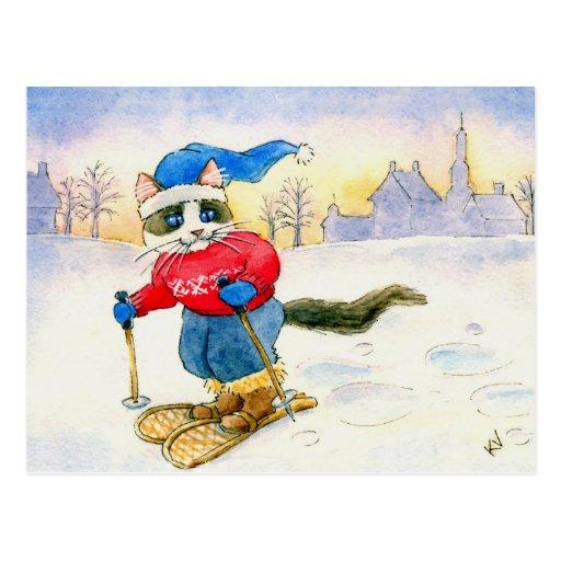 Snowshoe Cat Postcard