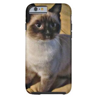Snowshoe Kitten Gifts Tough iPhone 6 Case
