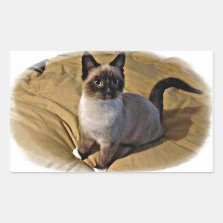Snowshoe Kitten Gifts Rectangular Sticker