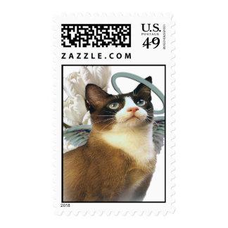 Snowshoe Kitten Postage Stamps