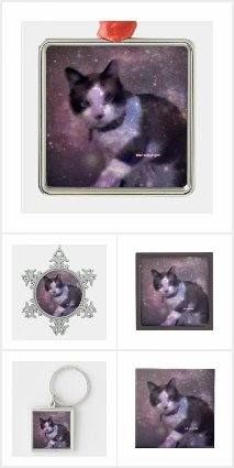 snowshoe kitty in the stars