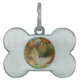snowshoe sixties flower child kitty pet ID tag