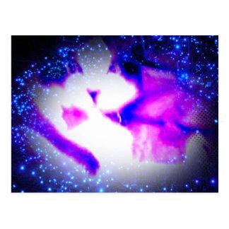snowshoe toxic purple double vision kitty postcard