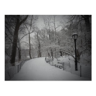 Snowstorm, Central Park, New York City Postcard