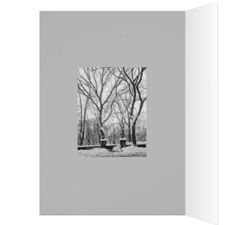 Snowstorm in Manhattan Holiday Template Card