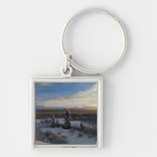 Snowy Afternoon Silver-Colored Square Keychain