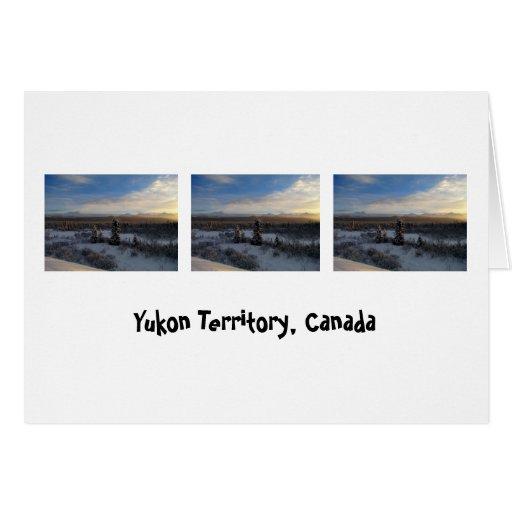 Snowy Afternoon; Yukon Territory, Canada Greeting Card