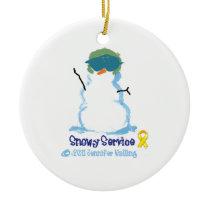 Snowy Air Force Ornament