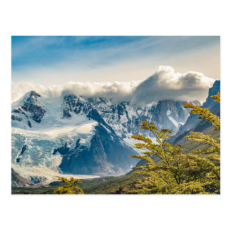 Snowy Andes Mountains, El Chalten Argentina Postcard