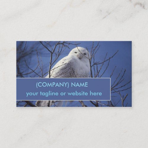 Snowy Arctic Owl, White Bird, Sapphire Blue Sky Business Card