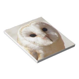 Snowy Barn Owl  Notepad