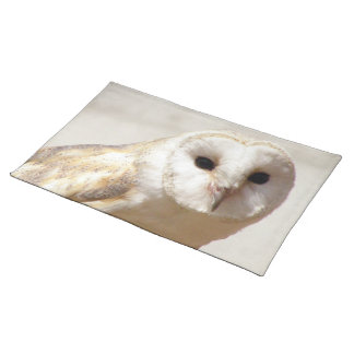 Snowy Barn Owl  Placemat