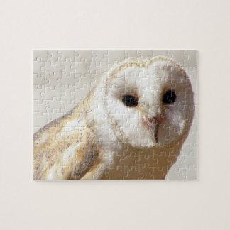 Snowy Barn Owl  Puzzle