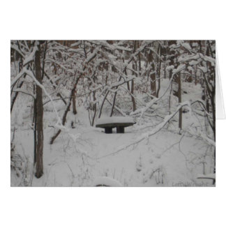 Snowy Bench notecards Card