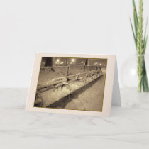 'Snowy Benches' Holiday Card - Christmas