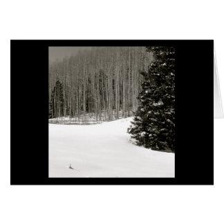 Snowy Birch Card