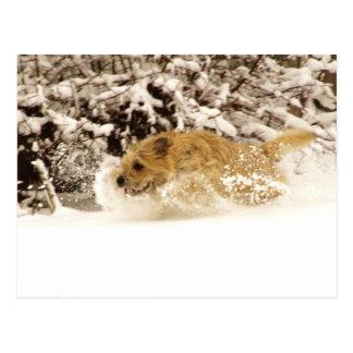 Snowy Bliss Postcard