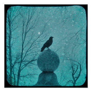 Snowy Blue Crow Poster