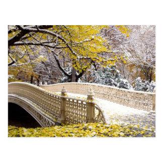 Snowy Bridge In Central Park NYC Postcard