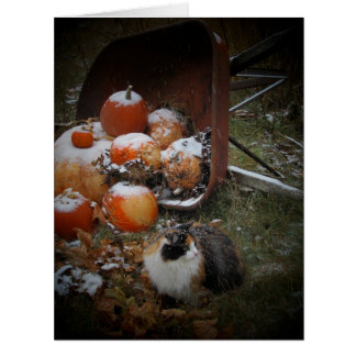 Snowy Calico Cat and Pumpkins Card