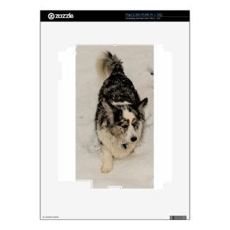Snowy Cardigan iPad 2 Skins