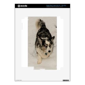 Snowy Cardigan iPad 3 Decals