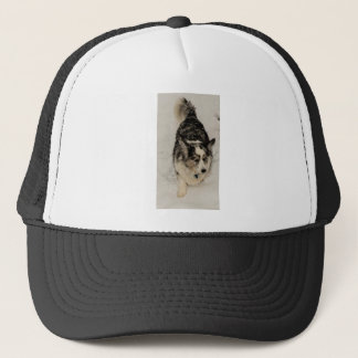 Snowy Cardigan Trucker Hat