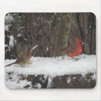 Snowy Cardinals and Towhee Mouse Pad