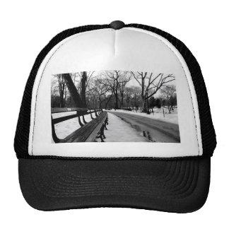 Snowy Central Park Gorras