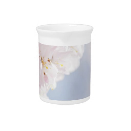 Snowy Cherry Blossoms Beverage Pitchers