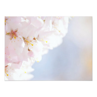 Snowy Cherry Blossoms Card