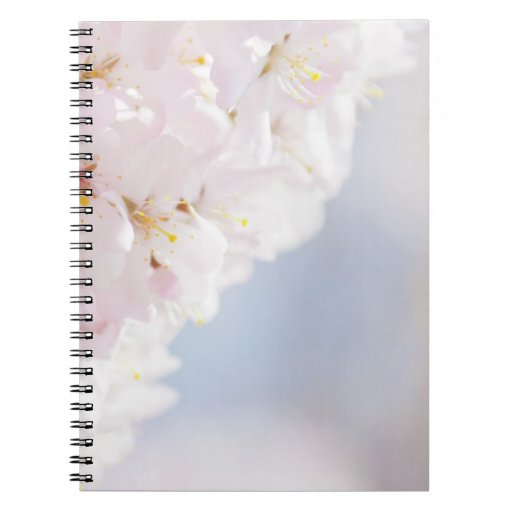 Snowy Cherry Blossoms Note Books