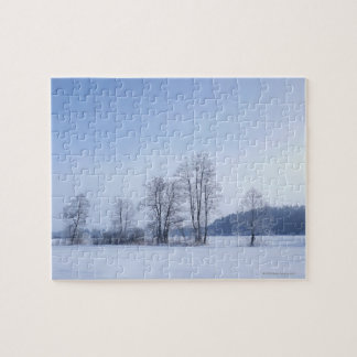 Snowy cold winter landscape 10 jigsaw puzzle