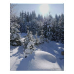 Snowy cold winter landscape 2 posters