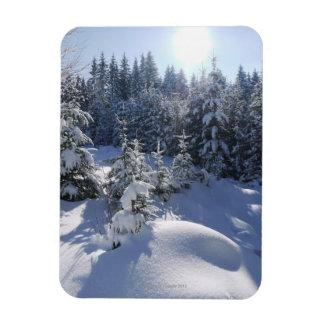 Snowy cold winter landscape 2 rectangular photo magnet